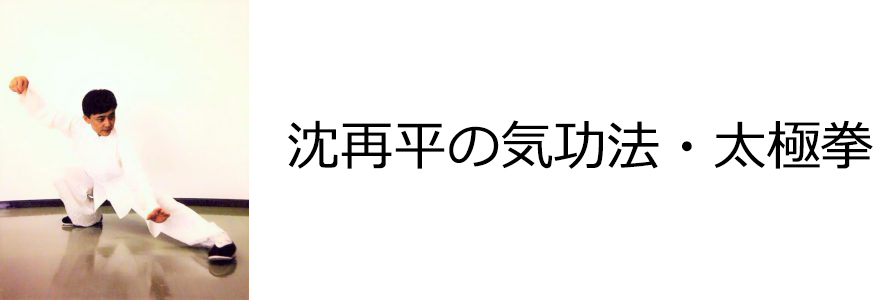沈再平の気功法・太極拳